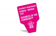 Diversity Benchmark gender